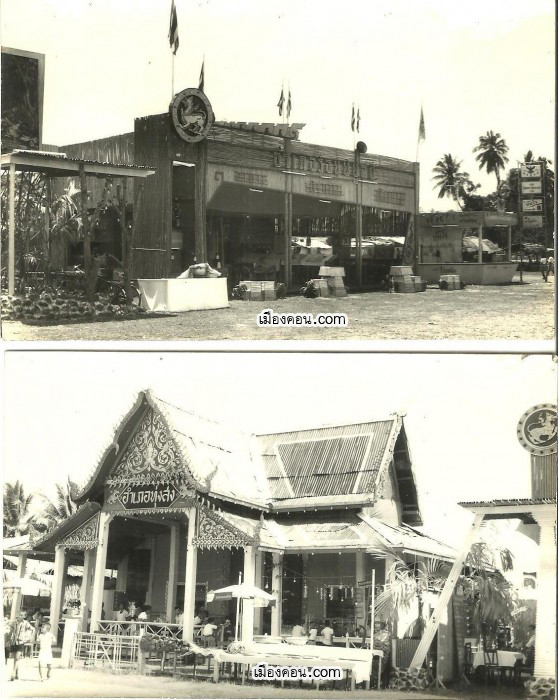 Picture-1891-558x700 copy